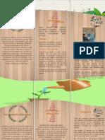Doc3 folleto herramienta dialogica