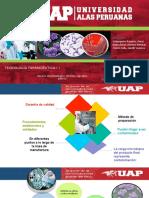 Diapositiva-ensayo-microbiológico