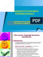 Curs Organizatii Inter Nation Ale, ID - REI