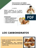 CARBOHIDRATOS, GLICÓLISIS
