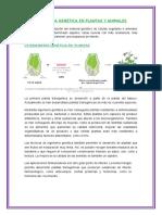 291053867-Ingenieria-Genetica-en-Plantas-y-Animales-ecologia