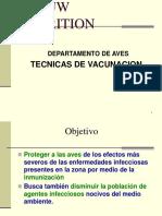 Vacunacion presentacion