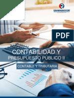 Contabilidad_ y_presupuesto_publico II_2019_act_cyt tecnologia Distancia.pdf