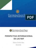 USTA-PERSPECTIVA INTERNACIONAL DE LAS NIIF