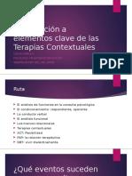 Introducción a elementos clave de las terapias contextuales