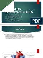 ANOMALIAS CARDIOVASCULARES