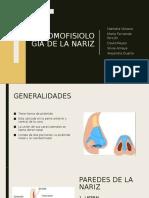 ANATOMOFISIOLOGIA DE LA NARIZ