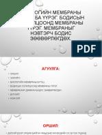 0_биохими.pptx