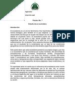 Practica 1 Estudio de los Ecosistemas 22062019-1.pdf