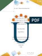 Paso3_FuncionesDelPsicologoJuridico