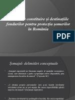 Sursele de constituire și destinațiile fondurilor pentru protecția șomerilor în România