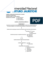 Cuadro conceptual 1.pdf