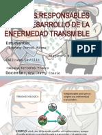 FACTORES RESPONSABLES DEL DESARROLLO DE LA ENFERMEDAD TRANSMIBLE