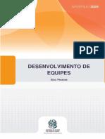 Desenvolvimento de Equipes (ESESP 2020).pdf