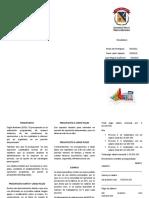 423582003-presupuesto-folleto.docx