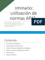 Seminario APA.pdf