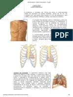 ACV Coração.pdf