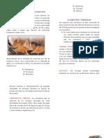 clasificacion de los animales que consumen los alimentos