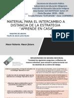 INTERCAMBIO DE ESTRATEGIAS A DISTANCIA CUARTO FELIPE