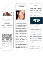 tarea folleto 2 hoja