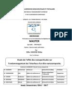 memoire_pdf_DH_