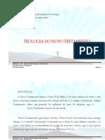(57) Teologia do Novo Testamento.pdf