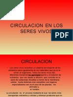 circulacionenvertebrados-130709202607-phpapp02
