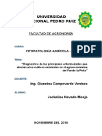 1° informe Agroecosistema fito agro.