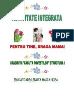 0_4proiect1.doc