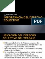 IMPORTANCIA DEL DERECHO COLECTIVO
