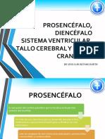 sistema ventricular.pptx