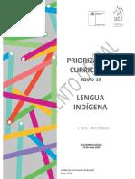 Lengua indigena