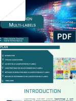 Multi-labels