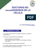 ESTRUCTURAS_NOMEMBRANOSAS.pdf