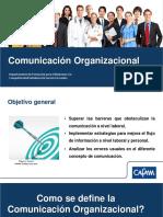 Contenido temático Comunicacón Organizacional.pdf