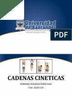 CADENAS CINETICAS.pptx
