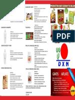 DXN PERU TRIPTICO OFICIAL I