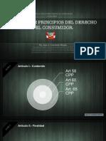 PRINCIPIOS - DERECHO DEL CONSUMIDOR