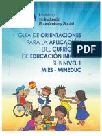 dlscrib.com_guia-orientaciones-aplicacion-cr-inicial.pdf