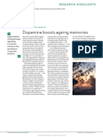 dopamine boosts ageing  memories