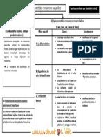 Résumé de cours épuisement des ressources - Économie le developpement durable - Bac Economie & Gestion (2012-2013) Mr ammar walid.pdf