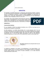 capitulo hepatitis-negroni (1)