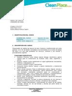 PERFIL DE CARGOS.doc