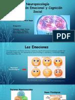 Neuropsicologia.zoom (1)