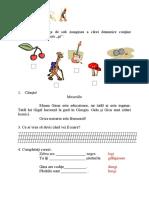 fise_grupuri_de_litere