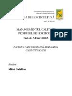 Mihai Galaftion_Managementul calității