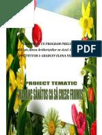 0_proiect_sanatate_iii_mena.doc
