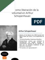 El Arte como liberación de la voluntad en Schopenhauer