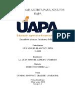 Tarea II, Derecho Comercial I