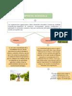 DEFINICION_EMPRESA_AGRICOLA